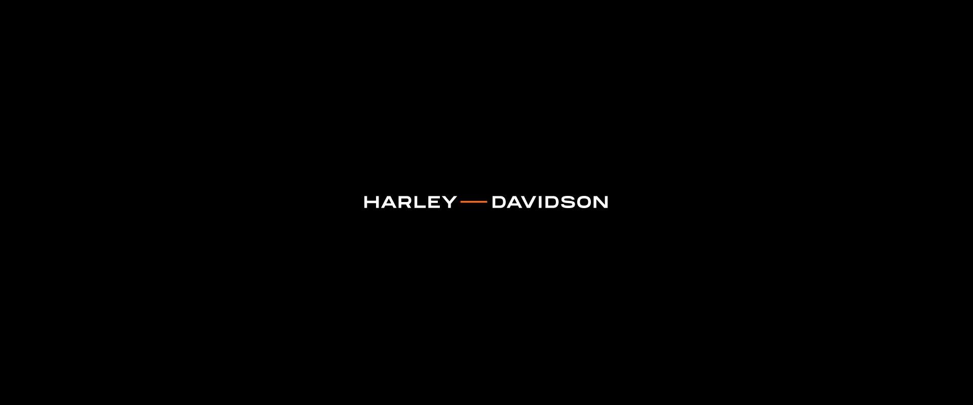 Harley Davidson - Manifesto 90s-0184