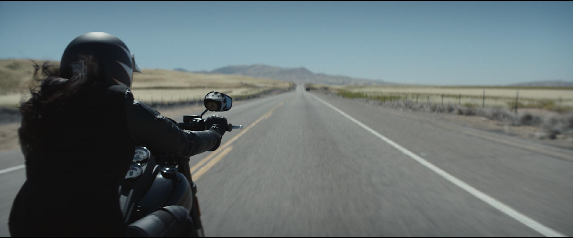 Harley Davidson - Manifesto 90s-0218