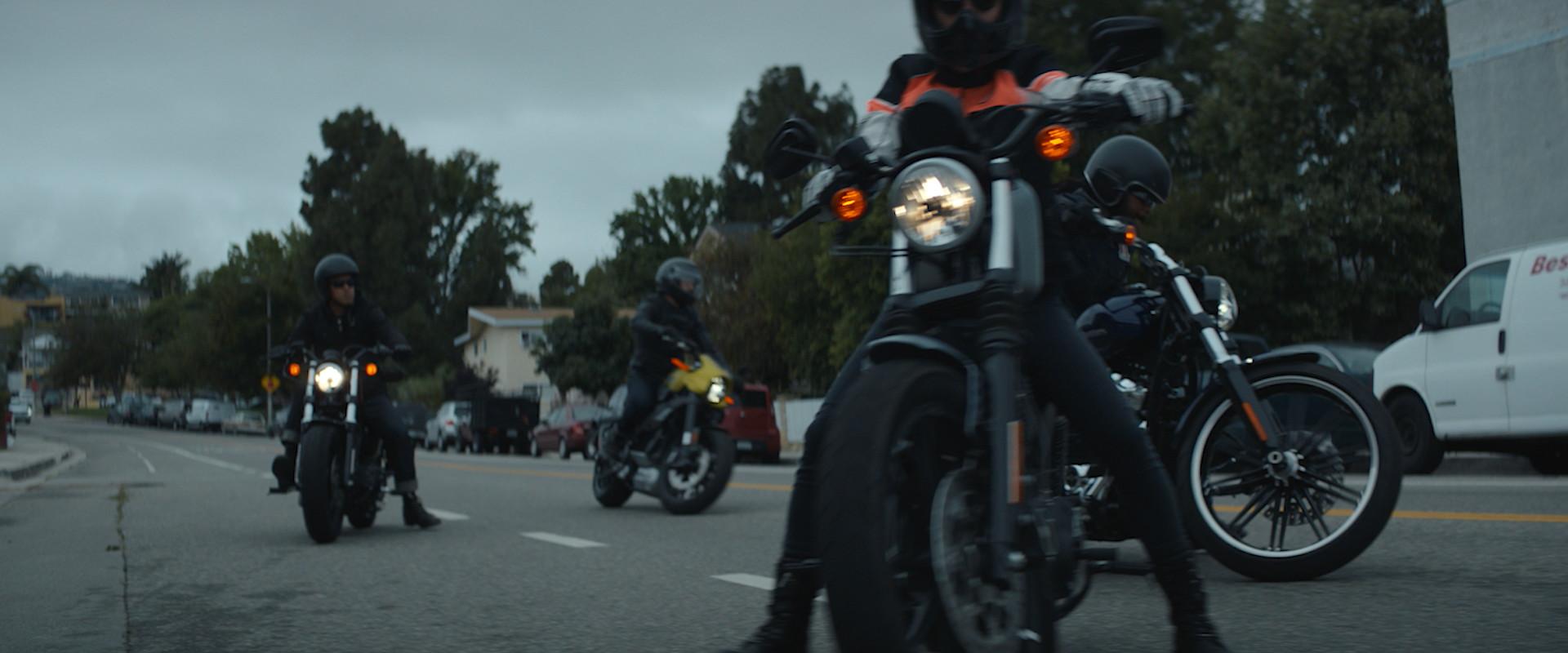 Harley Davidson - Manifesto 90s-0221