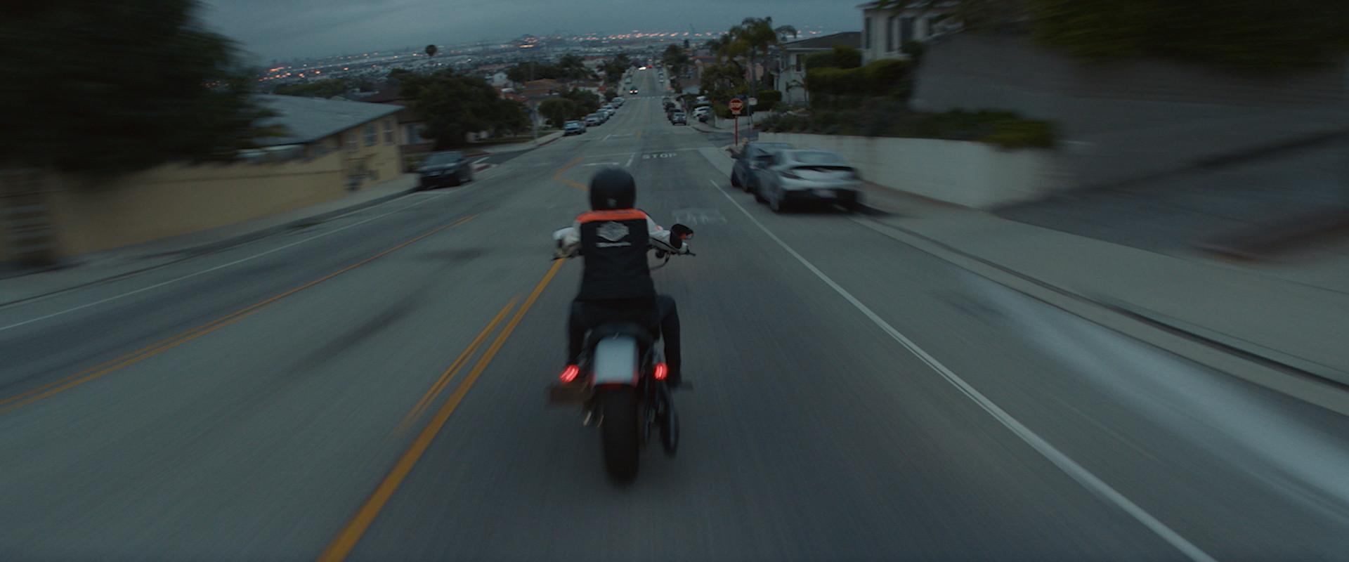 Harley Davidson - Manifesto 90s-0227