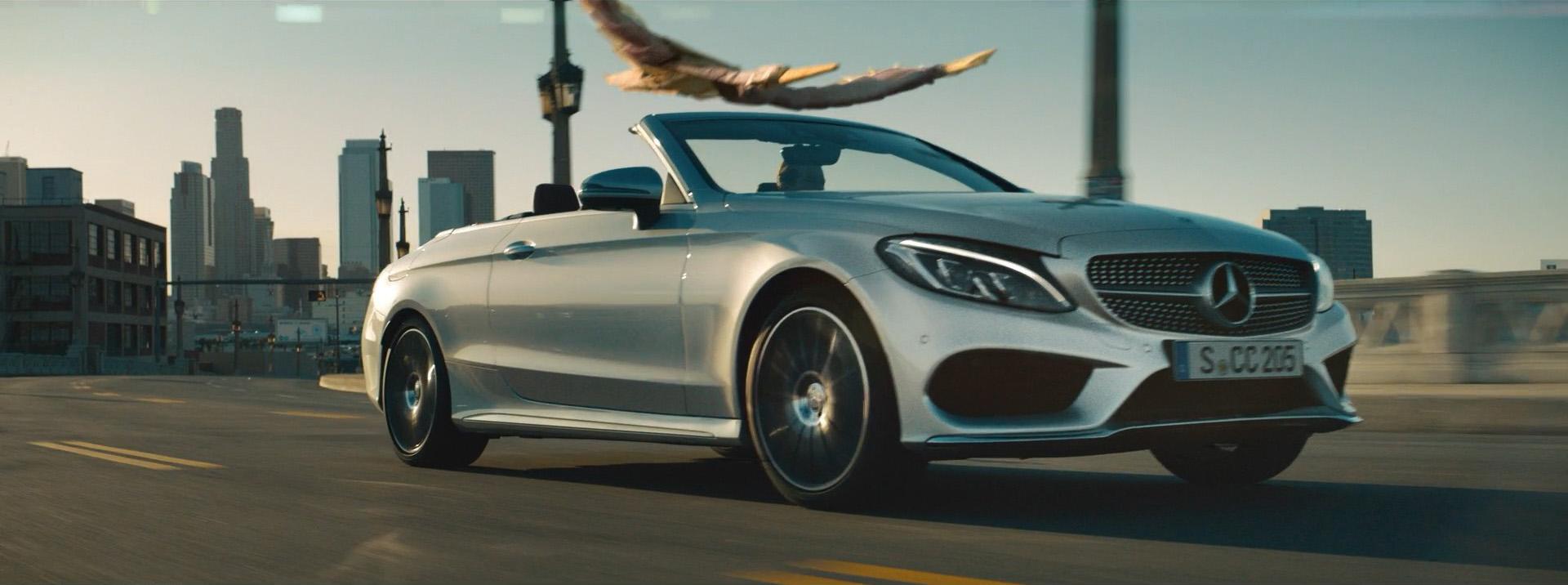 Mercedes-Benz | Birds-0224